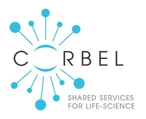 Accelerate your research with CORBEL's 2nd Open Call for biomedical research projects